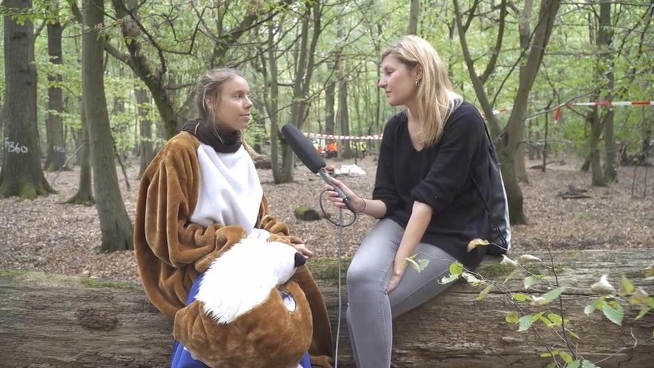 Liveblog zur Räumung: Hambacher Forst aktuell: 17 Personen in Gewahrsam genommen