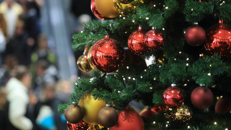 Oh Tannenbaum, oh Tannenbaum: Darauf sollten Sie beim Weihnachtsbaum ...